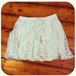 SWS Skirt